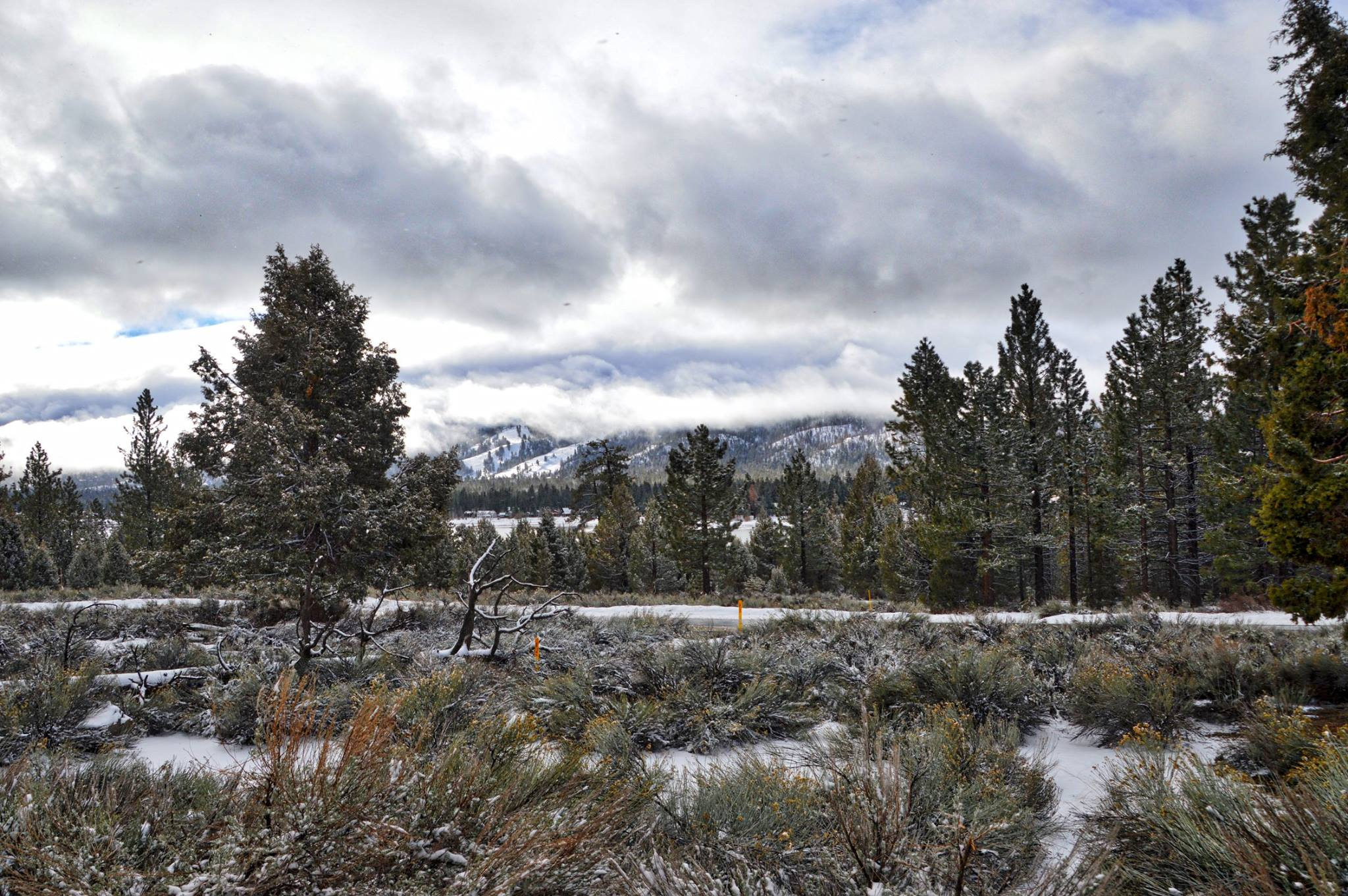 Membership in the Southern California Mountains Foundation Helps Protect Natural Spaces